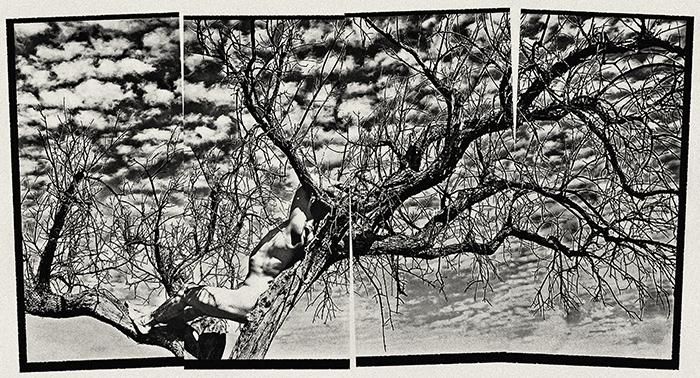 Hombre árbol, autorretrato, 2010.